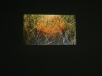Hey I, video projection, 2011